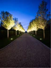 Driveway Lights by Tree Lined Driveway Home Design Ideas Pictures Remodel