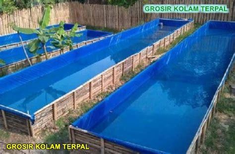 Harga Kolam Terpal Gurame budidaya ikan gurame kolam terpal agro terpal