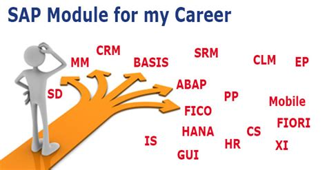Https Www Edu Mba Sap Finance Professionals by Sap Module Course For Your Career Best Career Advice For Sap