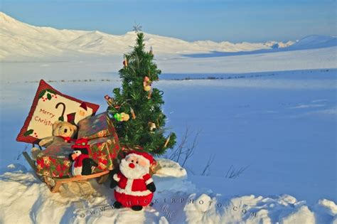 christmas gifts landscape alaska photo photo information