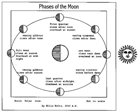phases of the moon diagram for printable diagram of the phases of the moon animated