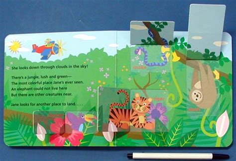 Baby Einstein Lift Flap Soundbook s animal expedition baby einstein lift the flap 보드북