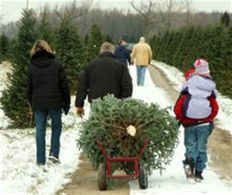 christmas tree farm sussex space farms sussex nj worst zoo many memories of going here as a kid visiting my
