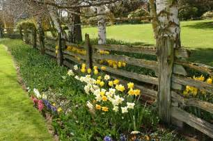 Shady Backyard Ideas 28 Split Rail Fence Ideas For Acreages And Private Homes