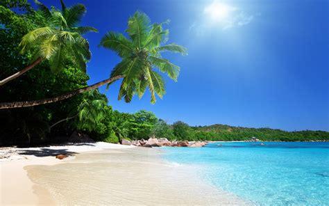 tropical beach wallpaper 2560x1600 32294