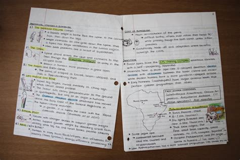 easyscript level 2 how to take fast notes books overview for raincookieart