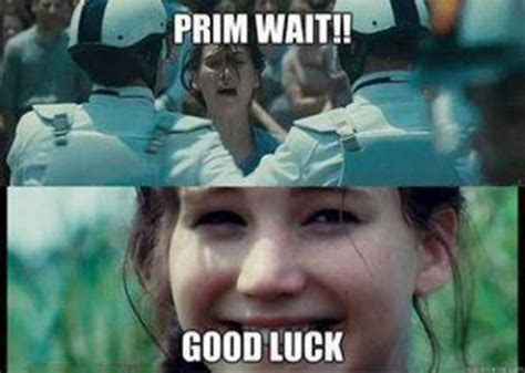 Funny Good Luck Memes - the funniest hunger games gifs and images cinema vine