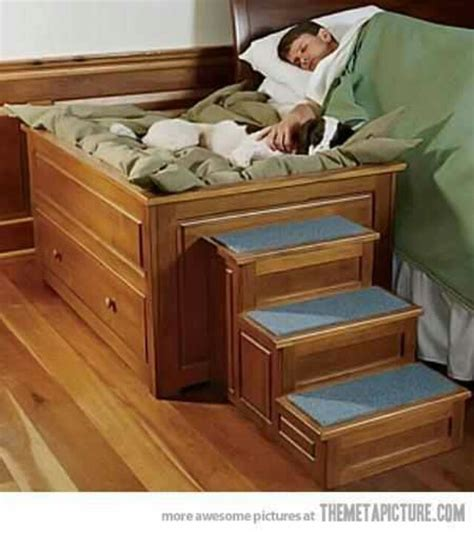 awesome dog beds another awesome dog bed dog houses furniture pinterest