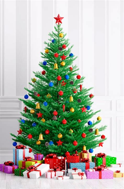 best real christmas trees by me best artificial trees goodtoknow