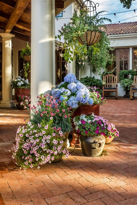 plant pot ideas for the patio patio mediterranean with