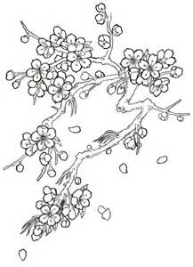 japanese cherry blossom tree drawing sketch coloring page sketch template - Cherry Blossom Tree Coloring Pages