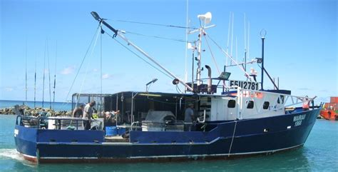 commercial boat brokers nz rarotonga fresh fish business for sale new zealand