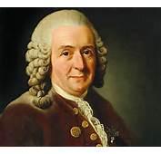 Biografia De Carl Von Linn&233 Linneo