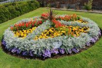how to start a flower bed garden design