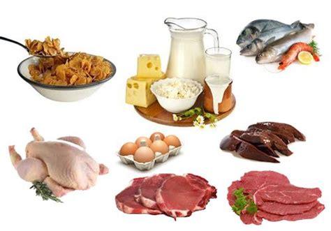 alimentos ricos en vitamina   se animals  sons