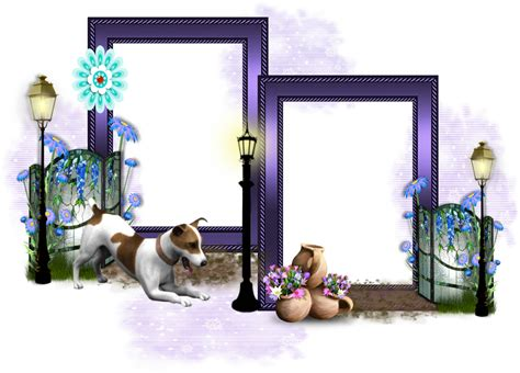 themed picture frames jackrussel themed cluster frames png the sweetest