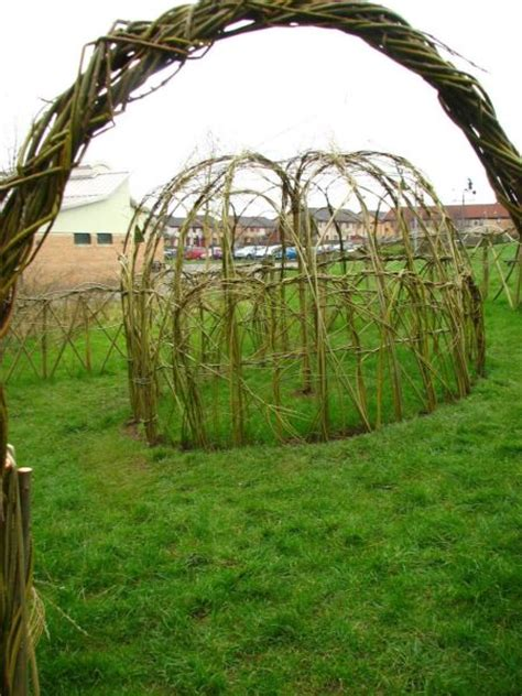 Willow Outer willow domes and other crafts