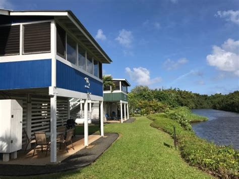 Hanalei Dolphin Cottages Hanalei Dolphin Cottages Updated 2017 Cottage Reviews