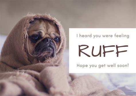 get well soon puppy get well soon 75945 vizualize