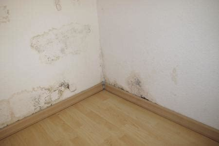 costo certificato energetico appartamento costo ristrutturazione appartamento roma