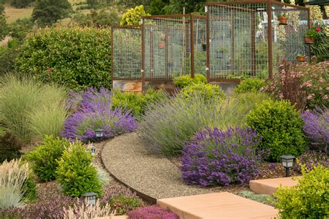Lavender Garden Ideas Lavender Landscaping Ideas Landscape Contemporary With Gravel Walkway Vegetable Garden