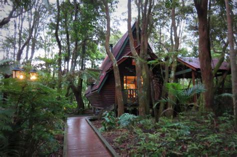 Springbrook Rainforest Cabins by Visit Springbrook National Park With Brisbane