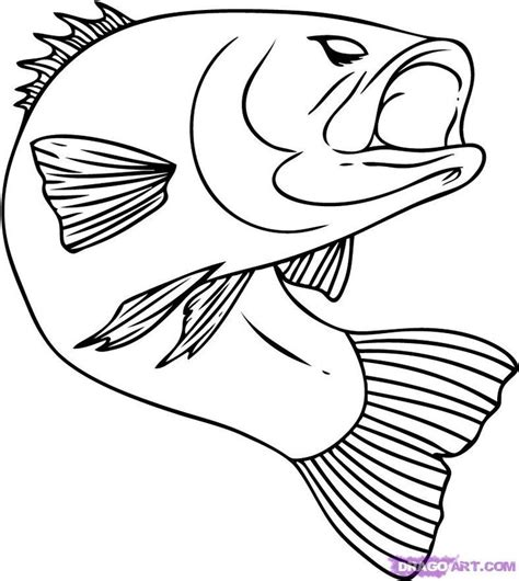 draw free no best 25 fish drawings ideas on fish