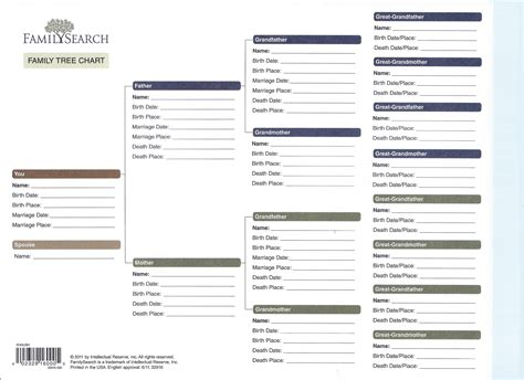 7 Best Images Of Family Org Chart Family Reunion Planning Checklist Family Practice Family Tree Organization Chart Template