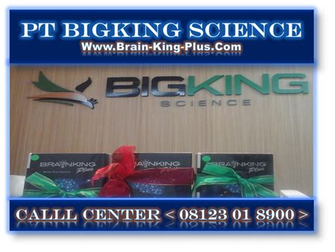 Brainking Plus Untuk Ginjal brainking plus testimoni syaraf terjepit pt bigking