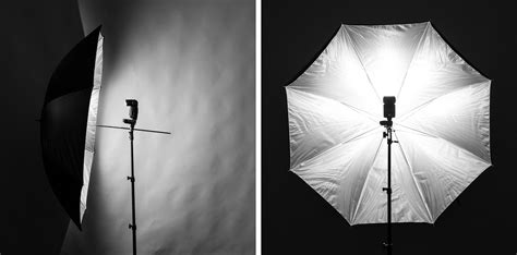 umbrella lights in photography photography umbrella lights related keywords suggestions