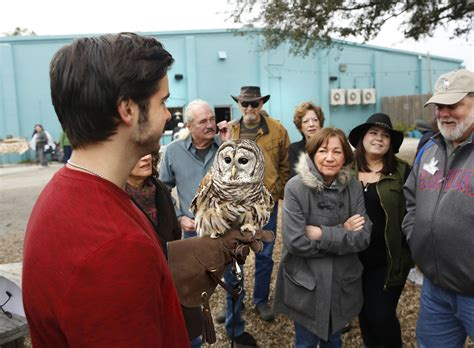 wild birds raises funds to rehabilitate wildlife news