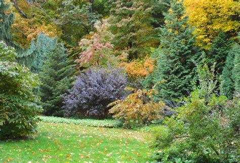 Away To Garden by Far Shrub Border October A Way To Garden
