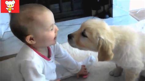 cute dogs and adorable babies compilation youtube дети и животные 5 приколы с животными осень 2014 dogs