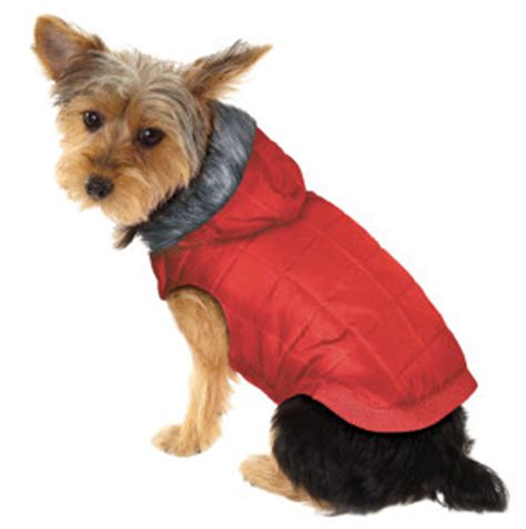 petsmart clothes gift guide for pets