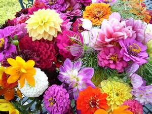 Flower Garden Florist Beautiful Flower Garden Weneedfun
