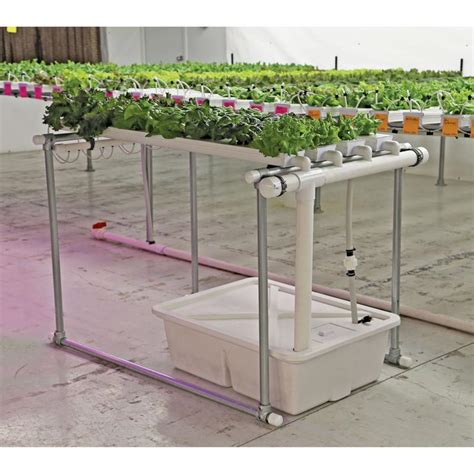 Hydrohobby For All Your Hydroponics Gear by Hydrocycle Hobby Nft Lettuce System 6 Quot W Channels Teksupply