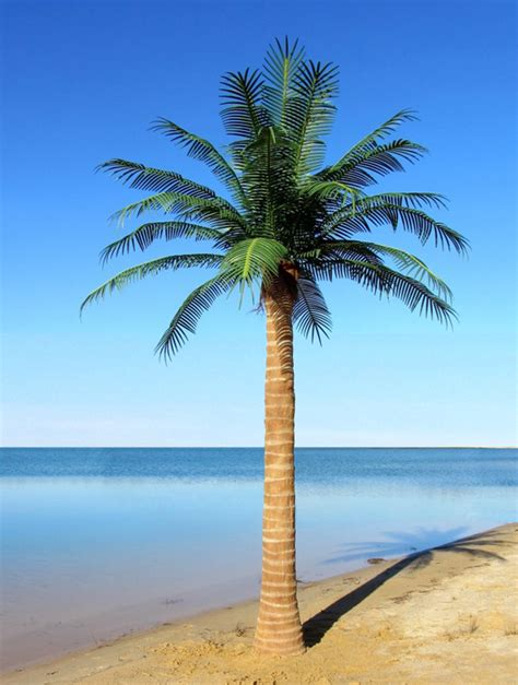 outdoor palm trees artificial custom made palm trees artifical exterior palms