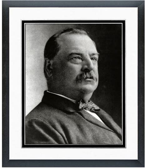 grover cleveland bathtub grover cleveland 22nd 24th president of the united