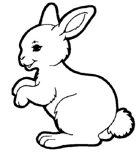 simple rabbit coloring page cute anime coloring pages with bunny costume anime bunny
