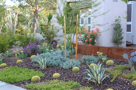 Backyard Xeriscape Ideas Xeriscape Landscaping Home Design