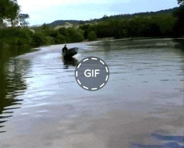 motor boat animated gif some unusual motor boat funny gifs pinterest funny
