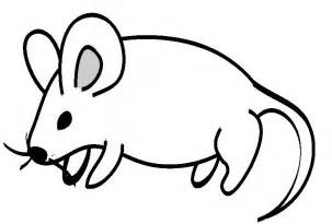 file mouse drawing jpg