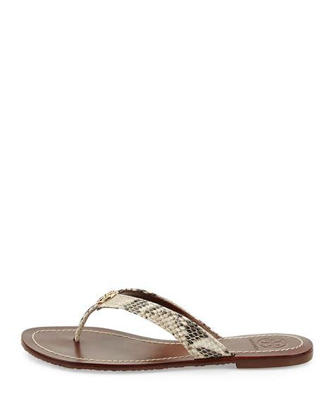 burch thora sandals burch thora snake print logo sandal in metallic