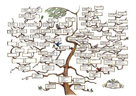 my s family tree family trees family reunions