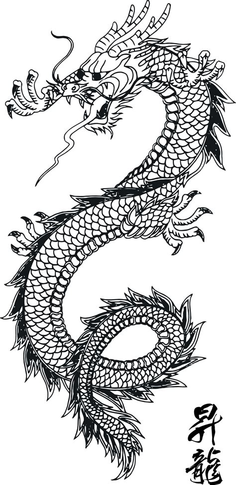 pattern drawing dragon line art traditional chinese dragon scales and pattern