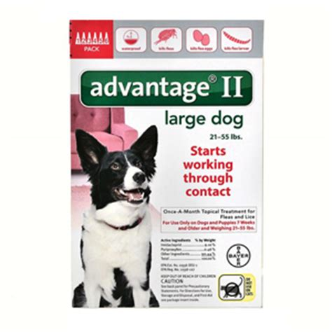 advantage for dogs 55 lbs 6 pack advantage ii for dogs 21 55 lbs 6 month supply vetdepot