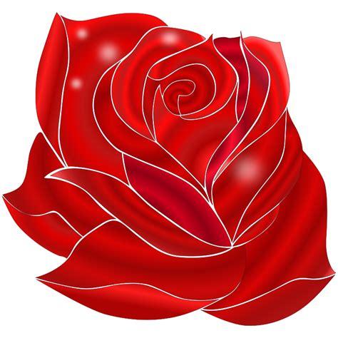 fiore rosa rossa clipart rosa rossa