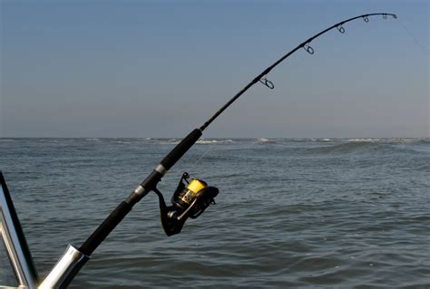best fishing rods top 10 best fishing rods of 2017 reviews pei magazine