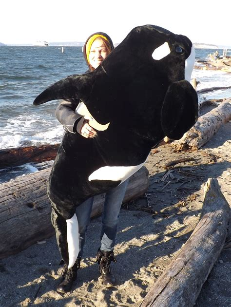 killer whale stuffed stuffed killer orca whales product categories