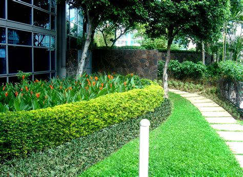 commercial landscape design photos plant professionals